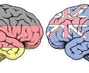 تاثیر زبان جدید بر مغز